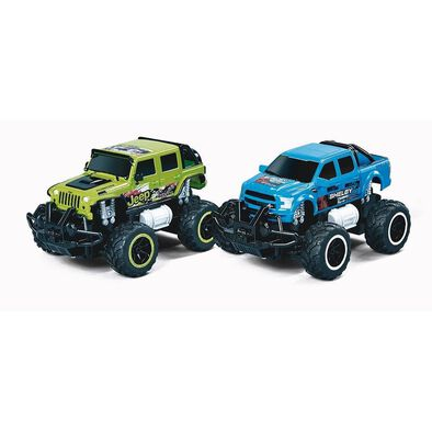 Fast Lane 1-24 R/C Monster Truck - Assorted