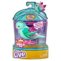 Little Live Pets Lil' Birds Single Pack - Assorted