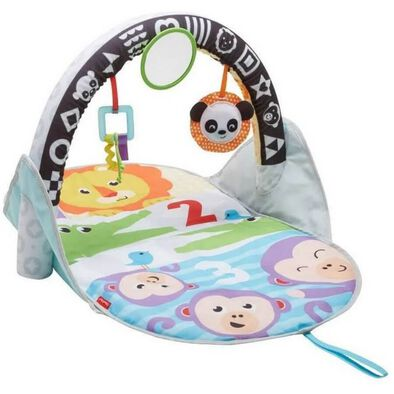 Fisher-Price 2-in-1 Flip and Fun Activity Gym