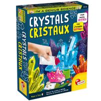 I'm A Genius Science Crystals