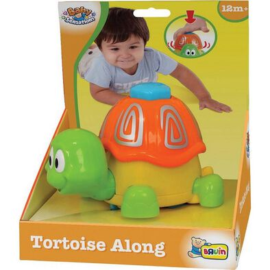 BRU Tortoise Along