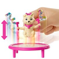 Barbie Dreamhouse Adventures Spin 'n Twirl Gymnast Doll and Accessories